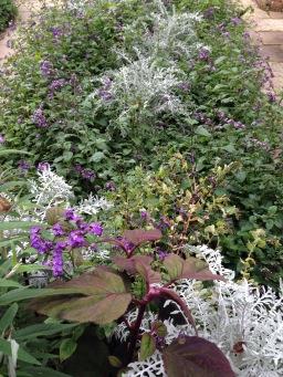 Decoding Gardening